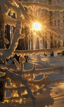 Зимняя сказка, красота, которая делает счастливым