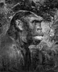 концепции происхождения человека
