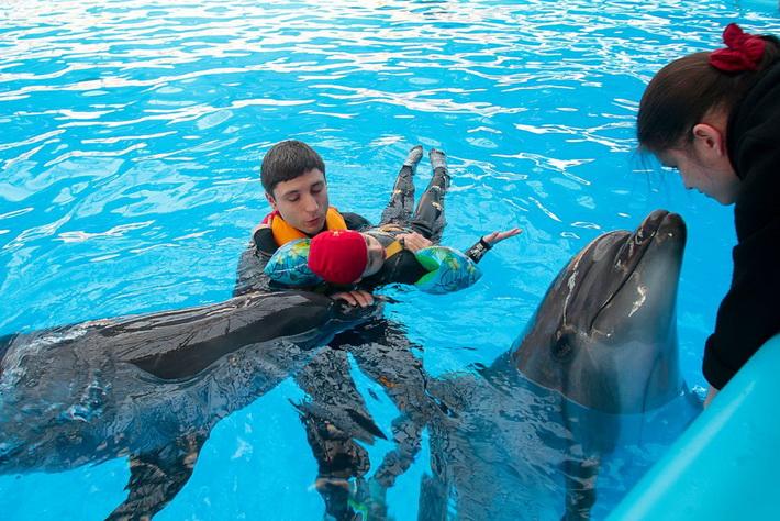Севастопольский дельфинарий – лечение дельфинами