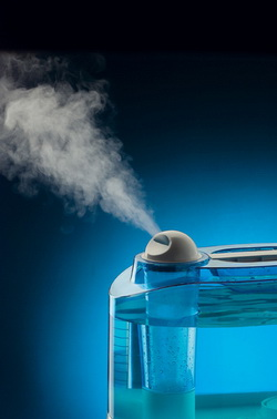 Увлажнитель воздуха, какой лучше выбрать?