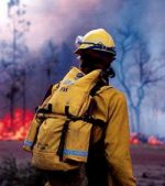 Россия горит огнем от засухи, а иностранцы смеются над нами