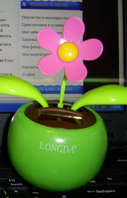 Flip Flap - солнечный цветок для поднятия настроения